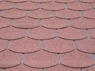 Shingles queue de castor 3m² (S579)